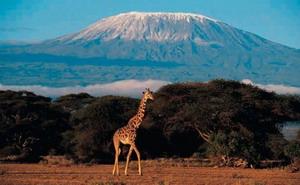 Alberto Contador subirá al Kilimanjaro