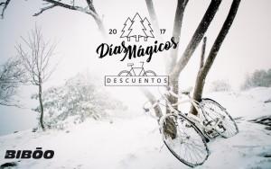 Días mágicos en Bibóo Bikes