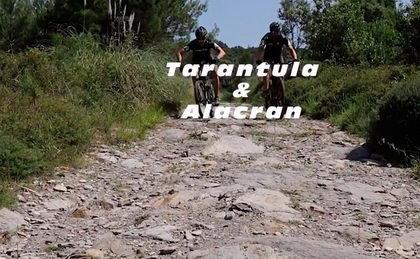 Vídeo BIBÓO e-mtb en acción con Alacrán y Tarántula