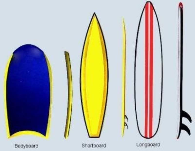 Manual del Surf Material-II