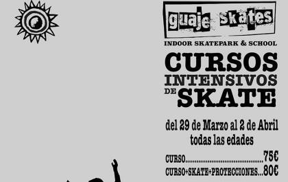 Curso intensivo de Skate para la Semana Santa.