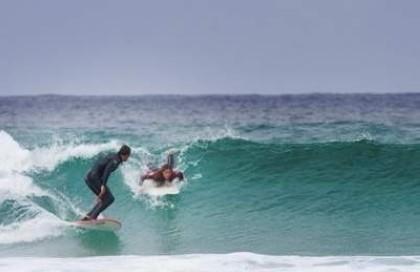 Manual del Surf-III