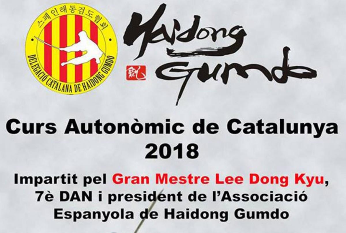Curso Haidong Gumdo en Cataluña