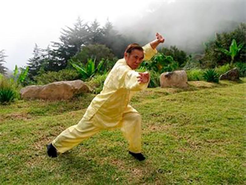 Cursos de verano con el maestro Wong Kiew Kit