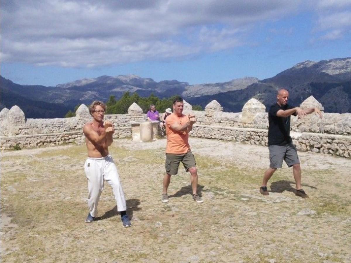 Kung Fu Grulla Blanca de Yong Chun en Mallorca
