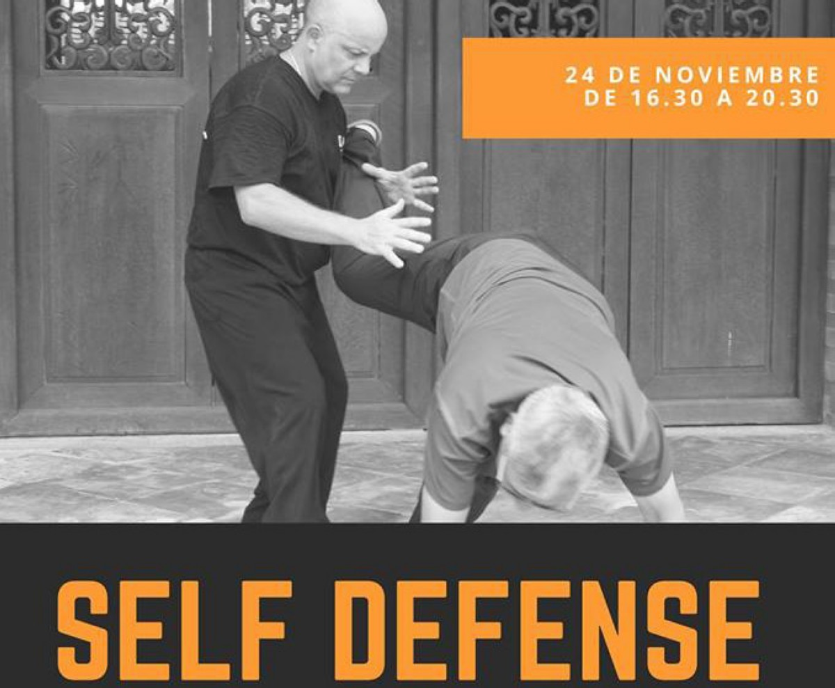 Seminario Qin Na 3 self Defense