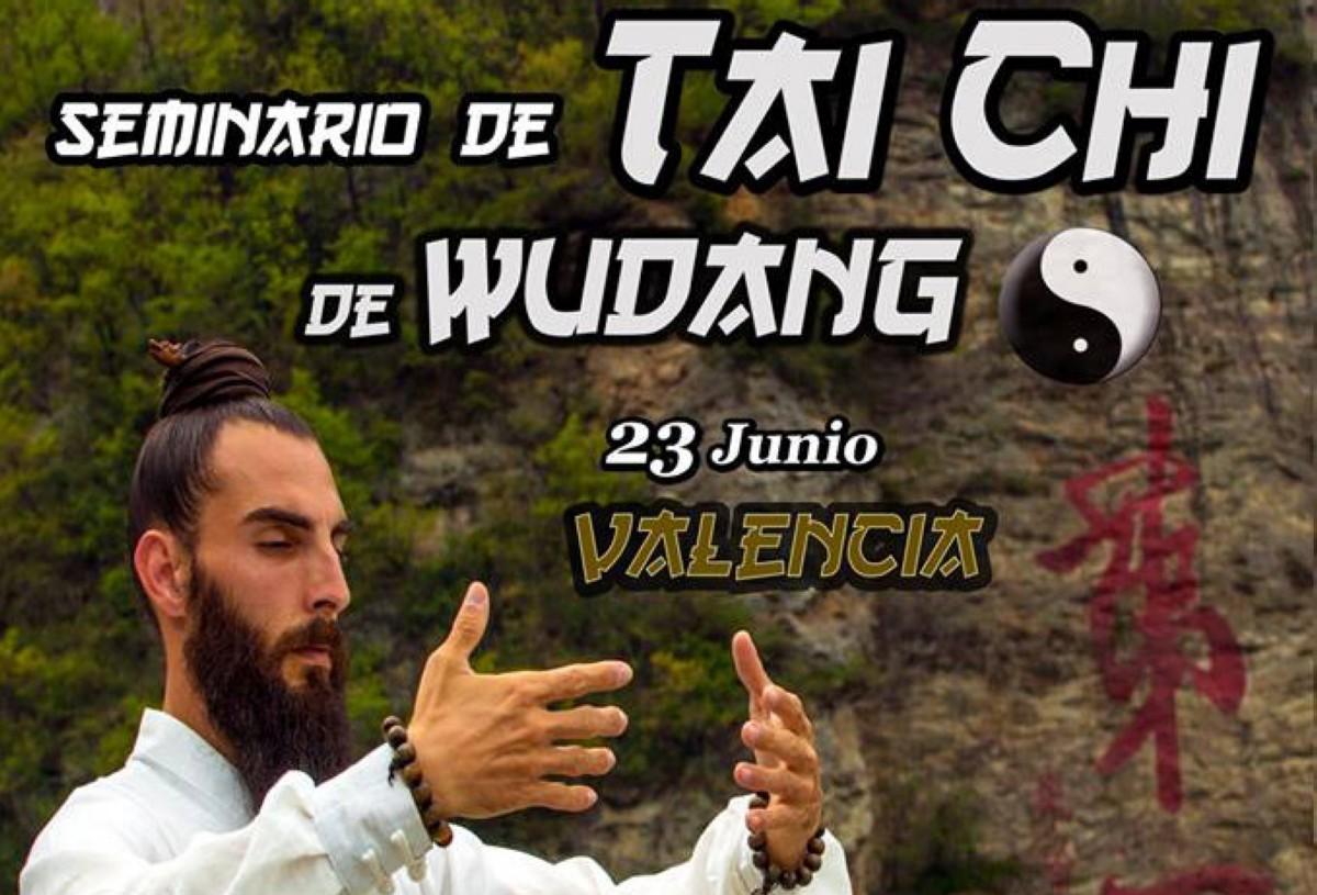Seminario de Tai Chi de Wudang