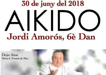 Aikido con sensei Amorós 6º dan en el Dojo Aitai