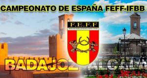 Campeonato de España: Distribución de categorías IFBB