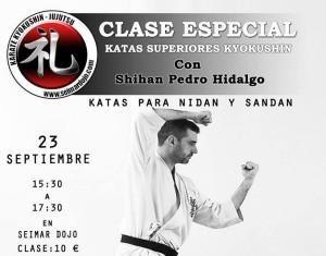 Clase especial: Katas Superiores Kyokushin