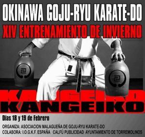 Kangeiko: Okinawa Goju-Ryu Karate-Do