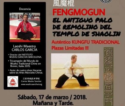 Kungfu tradicional en Tarragona