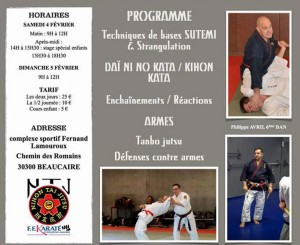 Stage regional de Nihon Tai Jitsu