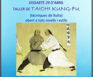 Taller de Taichi Kung-fu (técnicas de lucha)