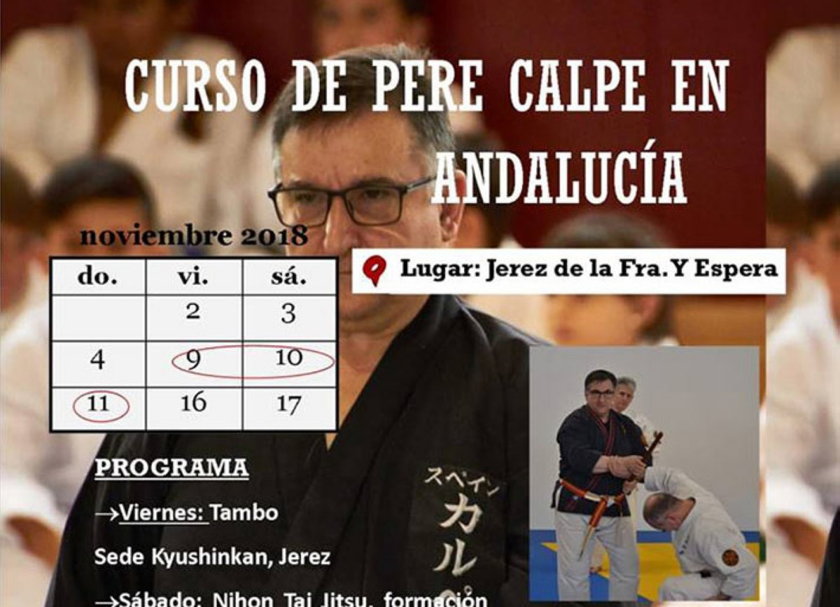 Curso de Nihon Tai-jitsu/Kobudo y ZNKR-IAIDO en Cádiz