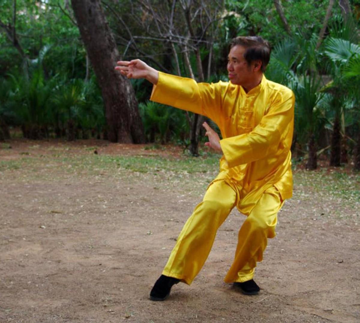 Cursos de verano con el Gran Maestro Wong Kiew Kit