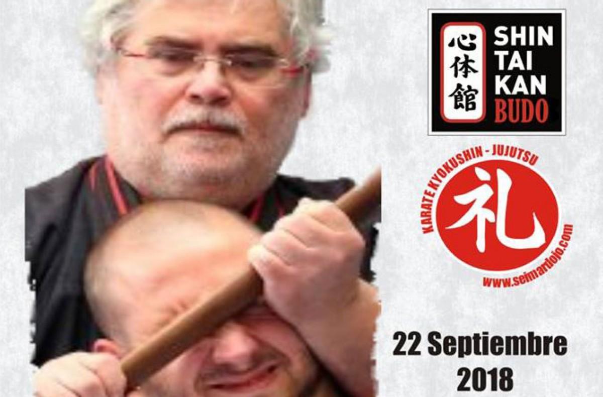 Seminario de TANBOJUTSU y YUBIBOJUTSU en Seimar Dojo