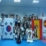 Seminarios de artes marciales Koreanas