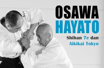Aikido con Hayato Osawa, shihan, 7º dan