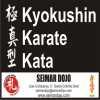 Clase especial de Kyokushin Kata