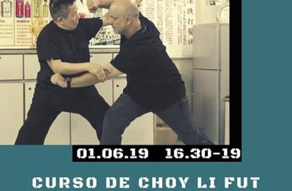 Curso de Choy Li Fut Ping Kuen