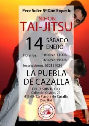 Curso de Nihon Tai Jitsu en Sevilla