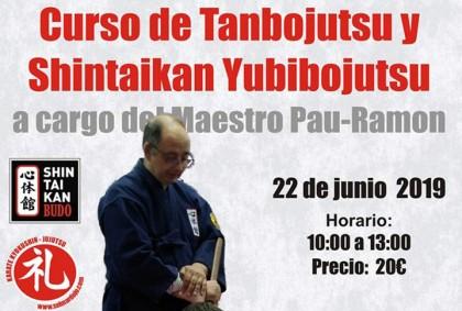 Curso de Tanbojutsu y Shintaikan Yubibojutsu