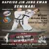 Hapkido Jin Jung Kwan seminario