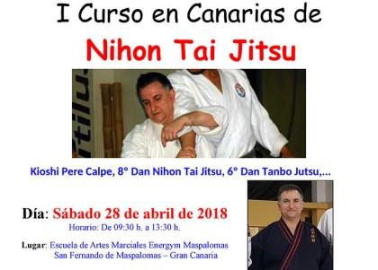 I Curso en Canarias de Nihon Tai Jitsu