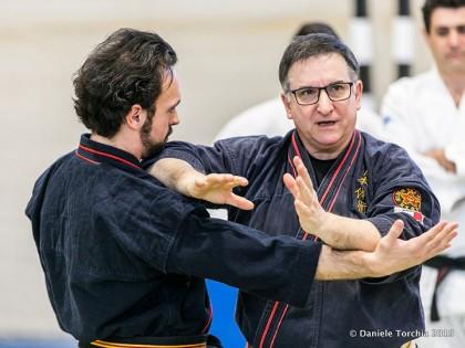 IX Curso Internacional de Nihon Tai-Jitsu / Jujutsu / Kobudo