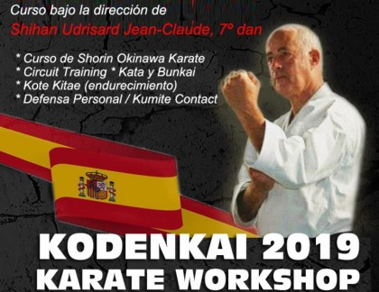 Kodenkai 2019 Karate Workshop