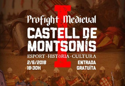 Profight Medieval
