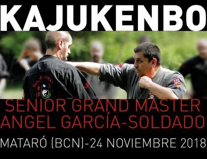 Seminario Kajukenbo. SGM Angel García-Soldado en Barcelona