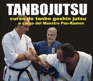 Tanbojutsu con el maestro Pau-Ramon
