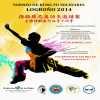 Torneo de Kung Fu solidario en Logroño