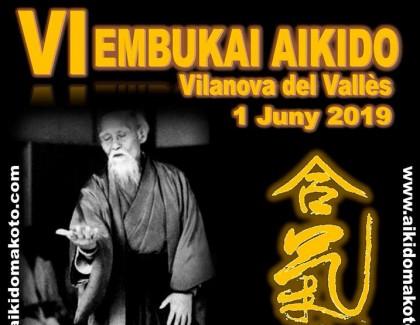 VI Embukai de Aikido en Vilanova del Vallès