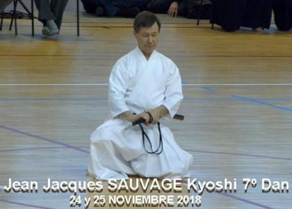 ZNKR Iaido con Jean Jacques Sauvage (Kyoshi)