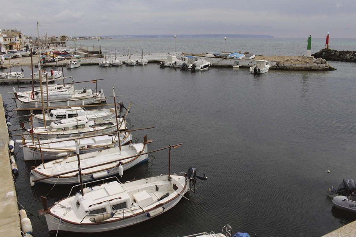 El Club Marítimo Molinar se ofrece a compartir el puerto