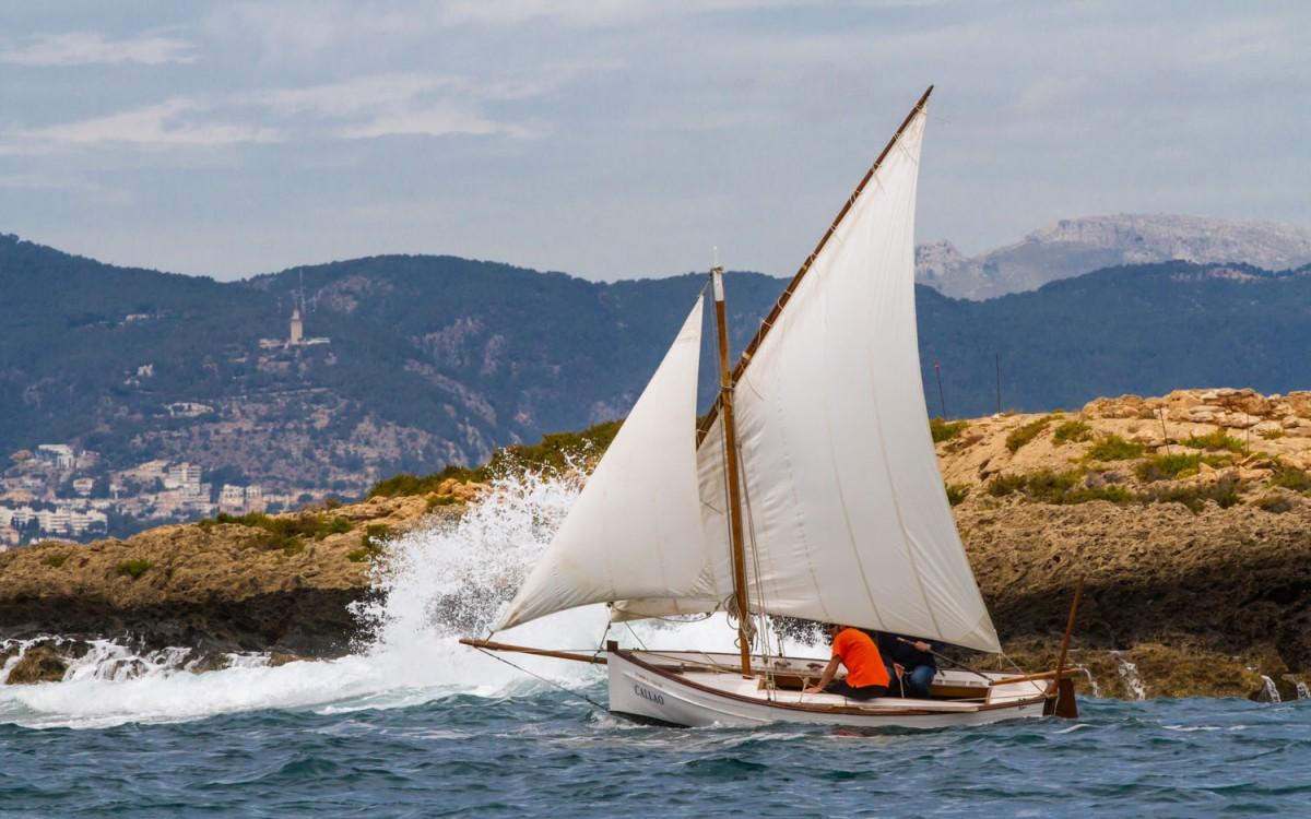 La XXIII Diada de Vela Latina de Mallorca de record