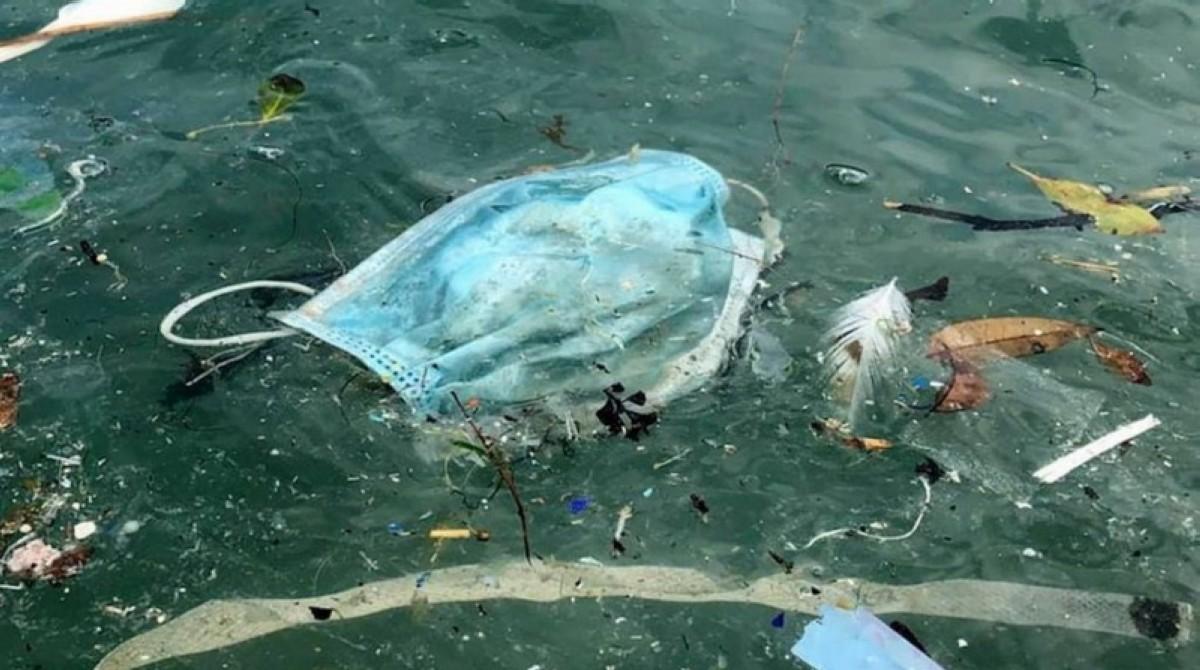 Las soluciones para la salud de los océanos