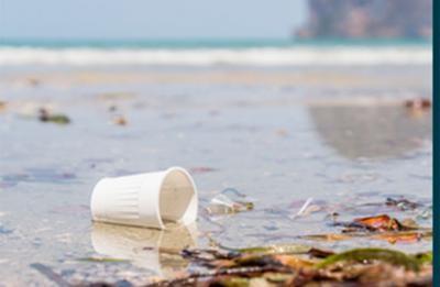 Seminario sobre la contaminación por plásticos en los océanos