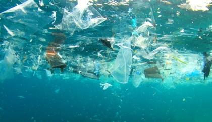 Soluciones locales para la contaminación mundial por plástico