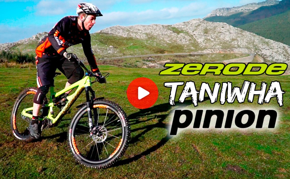 Zerode Taniwha Pinion