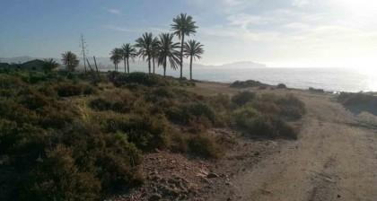 El entorno de Mar de Pulpí protagonista de los campeonatos de España de Duatlón y Triatlón Cros 2019
